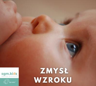 Read more about the article Nadwrażliwość zmysłu wzroku
